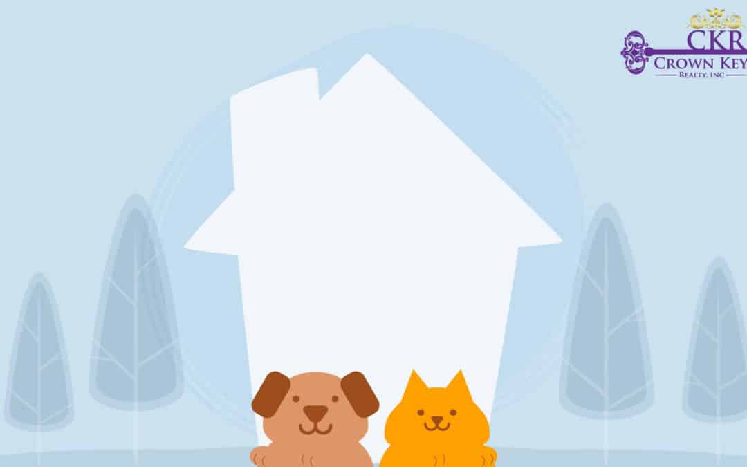 Pets & Property Management